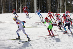 Men's Cross-country 50km mass start in Sochi Stock Photography