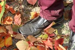 Men`s fall fashion- burgundy jeans for men stock photo