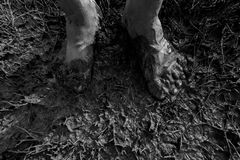 Men`s feet clotted mud. Men`s feet muddy and dirty Stock Photos