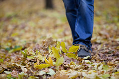 Men's feet are in the woods Stock Photos
