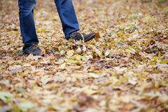 Men's feet are in the woods Stock Photo