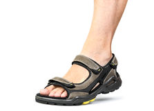 Men's foot in sandals Royalty Free Stock Photography