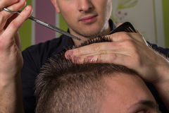 Men's hair cutting with scissors in a beauty salon. Men's hair cutting with comb and scissors in a beauty salon royalty free stock image