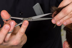 Men's hair cutting with scissors in a beauty salon Royalty Free Stock Image