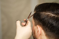 Men`s haircut. Professional hairdresser doing haircut men`s hair. Haircut with scissors. Beauty saloon. Male beauty. The client is a hipster Royalty Free Stock Image