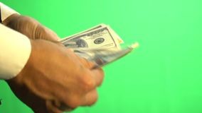Hands of a businessman in a shirt on a background of a Chroma key counting one hundred dollar bills stock video footage