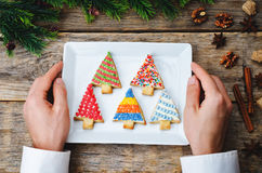 Men's hands holding colored Christmas tree cookies Royalty Free Stock Photos