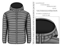 Men`s hooded insulated down jacket Stock Images