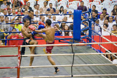 Men's Kick Boxing Action (Blurred) Stock Photography