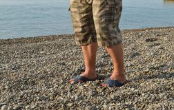 Men`s legs in flip-flops and shorts, a man standing on the beach on a pebble beach.  stock photos