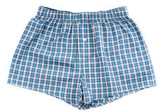 Men's plaid shorts Royalty Free Stock Image