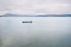 Men's rowing team Stock Images