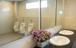 Men& x27; s ruimte die bloemen en kunstmatige baai werpen Royalty-vrije Stock Foto