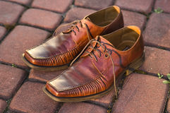 Men's shoes. Photo of men's shoes outdoor Royalty Free Stock Image