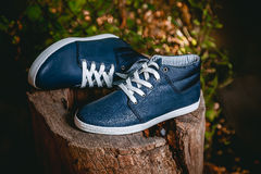 Men's shoes, sneakers on nature Stock Images