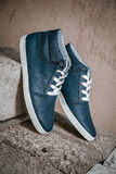 Men's shoes, sneakers on nature Royalty Free Stock Image