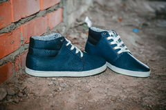 Men's shoes, sneakers on nature Royalty Free Stock Photography