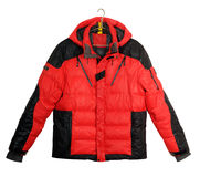 Mens sports down jacket Stock Image