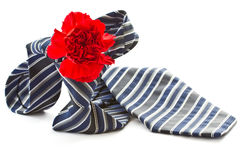 Men's tie with a red carnation Royalty Free Stock Image