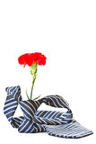 Men's tie with a red carnation Royalty Free Stock Photo