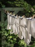 Men`s Underwear on Vintage Outdoor Clothesline. Men`s clean but old underwear hanging on an outdoor clothesline. Soft focus, artistic style Royalty Free Stock Photos