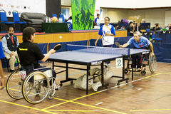 Men's Wheelchair Table Tennis Action. Image of the men's wheelchair table tennis match between Vietnam (blue) and Indonesia (black) at the 5th Asean Para Games Stock Images