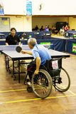 Men's Wheelchair Table Tennis Action. Image of the men's wheelchair table tennis match between Vietnam (blue) and Indonesia (black) at the 5th Asean Para Games Royalty Free Stock Image