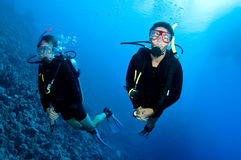 Men  scuba dive togeather Royalty Free Stock Photography