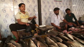 Men selling fish at the stand of local street market in Mumbai. stock footage