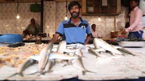 Men selling fish at the stand of local street market in Mumbai. stock video footage