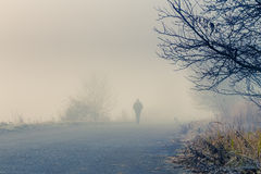 Men silhouette in the fog Stock Photography