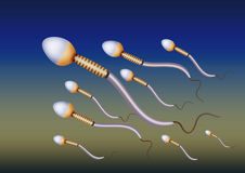 Men sperm. Cells generated by illustration Stock Photography