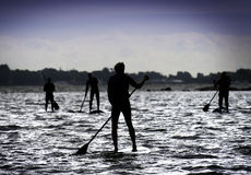 Men on a Standing up paddle board. Stock Images