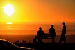 3 men talking at sunset. A couple of men having chat near the beach Royalty Free Stock Photo