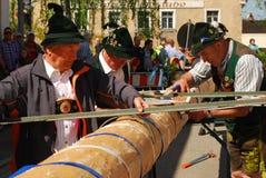 Men in traditonal costumes prepare Maypole. Men dressed in traditional costumes preparte to raise a Maypole in Neuötting,Germany Royalty Free Stock Photo