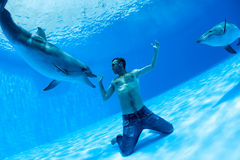 Men and two dolphin Royalty Free Stock Photos