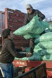 Men unloading sacks with fodder from a truck Royalty Free Stock Photography