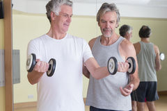 Men using weights together Stock Image