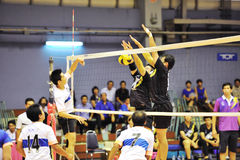 Men volleyball players chaleng Royalty Free Stock Image