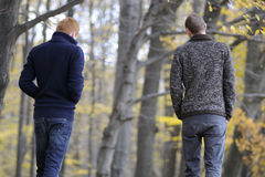 Men walking in parks. Young people relaxing in nature Royalty Free Stock Photos