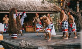 Men Wearing White and Black Checked Sarong Standing on Stage Royalty Free Stock Images