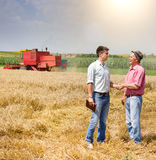 Men in the wheat field at harvest Stock Photo