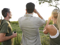 Men And Woman Looking At View Stock Images