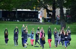 Men and women doing fitness on the lawn in the city Park stock image