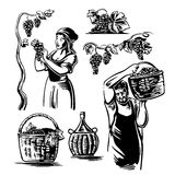 Men and women harvest the grapes in the vineyard.. Black and white vintage vector illustration for label, poster, icon, web design Stock Images