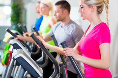 Men and women on treadmill in gym Royalty Free Stock Photography