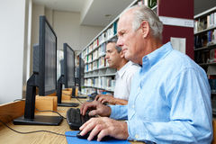 Men working on computers in library Royalty Free Stock Photos