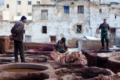 Men working hard in the tannery souk in Fez, Morocco Stock Images