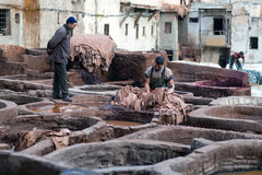 Men working hard in the tannery souk in Fez, Morocco Royalty Free Stock Image