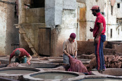 Men working hard in the tannery souk in Fez, Morocco Stock Photo